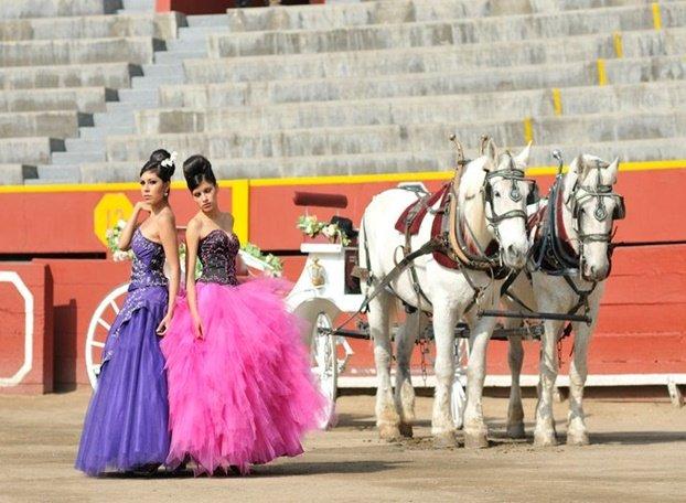 caballos-transporte-para-una-quinceañera-3